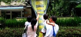 Tham vườn bách thú ở Yangon